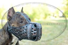 Precious Barbed Wire Painted #Leather #Dog #Muzzle $79.00