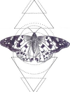 Practicing mixing geometric lines and images from realism. I decided the butterfly looked better as a silhouette without colour.   Dra...