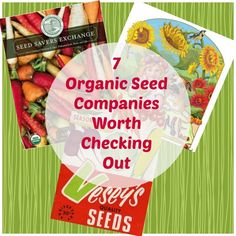 7 organic seed companies worth checking out