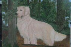 Golden Retriever on 11x14 canvas