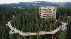 Czech republic - Lipno treetop walk