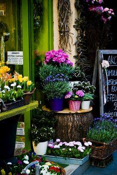 Flower store/stand: Nagykörút, Budapest