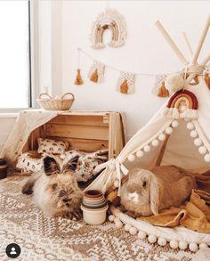 Diy Bunny Cage, Diy Bunny Toys, Bunny Cages, Pet Bunny Rabbits, Pet Rabbit, Indoor Rabbit House, Rabbit Habitat, Bunny Room, Bunny Hutch