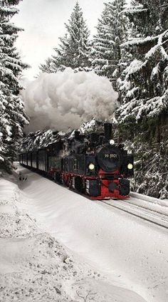 Trens Midnight Sun Travel By Train North Pole Experience Northern Lights Sweden