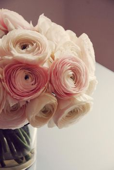 Ranuculus photo and flowers by Lily and May Floral Design