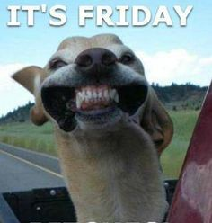 Are you looking forward to the weekend?!