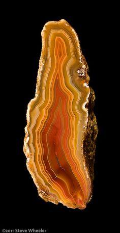 Moctezuma Agate / Mexico ✏✏✏✏✏✏✏✏✏✏✏✏✏✏✏✏ AUTRES MINERAUX - OTHER MINERALES ☞ https://fr.pinterest.com/JeanfbJf/pin-min%C3%A9raux-minerals-index/ ══════════════════════ BIJOUX ☞ https://www.facebook.com/media/set/?set=a.1351591571533839&type=1&l=bb0129771f ✏✏✏✏✏✏✏✏✏✏✏✏✏✏✏✏