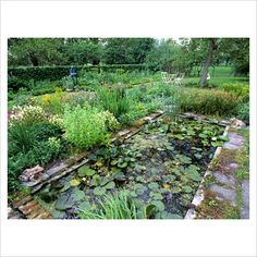 formal library images | GAP Photos - Garden & Plant Picture Library - Small, formal pond - GAP ...