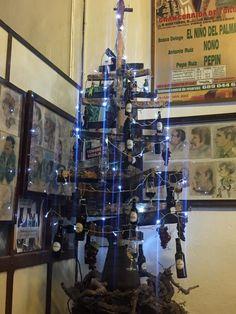 In old Jerez town and the zambombas are in full swing. Local Bars, Cadiz, Saturday Night, Christmas Tree, Teal Christmas Tree, Xmas Trees, Christmas Trees, Xmas Tree