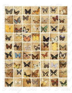Butterflies on Vintage Handwritten Letters 3 by PrettyAsAPixel