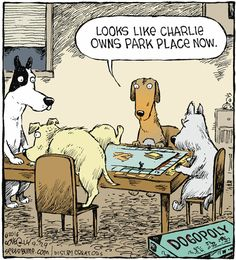 If dogs played Monopoly Funny Dog Memes, Funny Shit, Funny Dogs, Hilarious, Funny Stuff, Dog Humor, Pet Memes, Funny Sayings, Dog Stuff