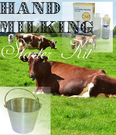 Hand Milking Starter Kit from One Ash Farm & Dairy Supply