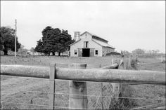 Harry Telford's stables at Braeside near Mentone in Victoria, where Phar Lap was stabled after the move south. Bought on the wealth from Phar Lap's wins, Telford's luck turned with the champion's loss. When he died in 1960, Telford was once again poor. The stables, built originally by Arthur Syme, a doctor and trainer, were made of Canadian cedar and hygenically maintained. Sadly, the house was abandoned when the last family moved and the stables were burnt to the ground in a fire in 1982.