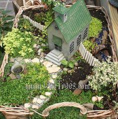 Jardines en miniatura en facebook jardines en miniatura for Jardines en miniatura