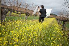Savvy Deets Bridal - A Wedding Blog: {Real Weddings} Rebecca & Felipe's Eco-Friendly Santa Rosa, California Wedding