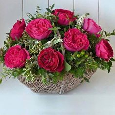 Breeders of the English Roses. Specialist growers of old, shrub, species, climbing and modern roses. All Plants, Potted Plants, Rosas David Austin, Rose Basket, Beautiful Table Settings, Planting Roses, Flowers Online, English Roses, Beautiful Roses