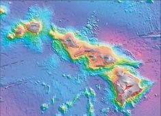 Strategia dell'Arcipelago Per Capire le Potenzialità di Una Nicchia