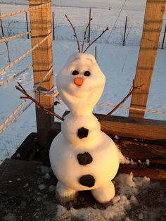 """""""Some people are worth melting for."""" ~ Olaf ⛄❄"""