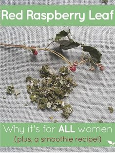 Red Raspberry Leaf: Why it's for ALL women (plus, a smoothie recipe!)