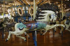 Merry Go Round Horses   The Real Story Behind the Merry-Go-Round