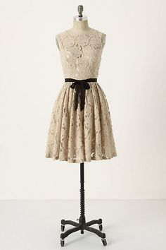 Spinning Lace Dress Tracy Reese $288