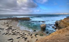 From beaches to history to animal encounters, a San Diego family vacation should be on your bucket list. Here are the best things to do in San Diego with kids. La Jolla Beach, La Jolla Cove, San Diego Vacation, San Diego Travel, La Jolla California, California Travel, Dream Vacations, Vacation Spots, La Jolla San Diego
