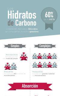 la función de los hidratos de carbono