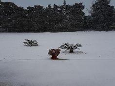 Attualià: #Allerta #meteo nel #Salento! Tanta neve: ecco le strade chiuse e gli avvisi più importanti! (link: http://ift.tt/2iThgIO )