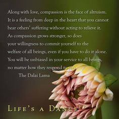 along with love, compassion is the face of altruism... The Dalai Lama