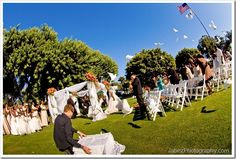 doves for weddings - picture by jabez photographer