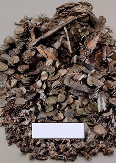 NØRREMØLLE – THE LARGEST VIKING AGE SILVER HOARD OF BORNHOLM (DENMARK) | Gitte Ingvardson - Academia.edu