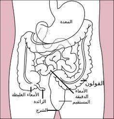 مصر امنا : سرطان القولون