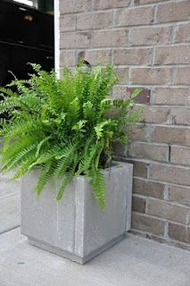DIY patio planter for 10 bucks.     -(5) 12x12 cement pavers   - Weatherproof Construction Adhesive  - DecoArt Patio Paint