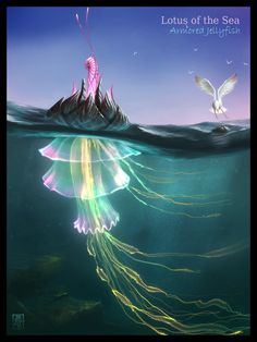 Lotus of the Sea, by Y.Bolman. Photoshop. Made for Creature of the Week on Conceptart.org