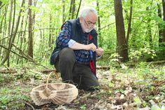 #Pilze sammeln in der #Kleinseenplatte Foto: Tobias Lemke / NK #meckpomm #pilztag #herbst #kulinarisch