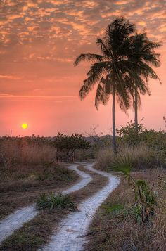 Sunset at Guludo, Quirimbas Archipelago, Mozambique