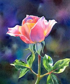 FAIR AND BRIGHT SOLD watercolor flower rose painting, painting by artist Barbara Fox