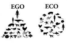 """La plupart des entreprises fonctionnent selon un organigramme pyramidale, au sommet duquel se trouve un chef, et en dessous, un dégradé hiérarchique. Or pour être pérenne, une structure ne peut  s'appuyer que sur une seule personne. Il lui faut un réseau.  """"Quand ce n'est plus un homme qui dirige le tout mais un réseau qui mène la danse, l'écosystème prend la place de l'egosystème""""."""