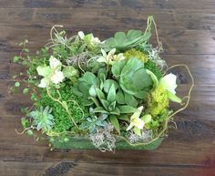 Long lasting coffee table arrangement with succulents, cymbidium orchids, creeping jenny, spanish and reindeer moss, and curly willow. - Green Bouquet Floral Design www.greenbouquetfloraldesign.com/every