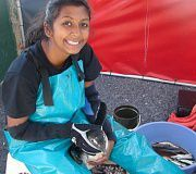 Volunteer at a Penguin Conservation Centre in South Africa