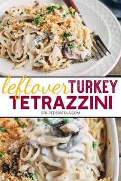 This from-scratch Turkey Tetrazzini recipe is an easy way to turn the leftover turkey from Thanksgiving into a cozy dinner. You can make this casserole with leftover ham or rotisserie chicken too, and even turn it into a freezer meal! Leftover Turkey Recipes, Leftovers Recipes, Leftover Ham, Dinner Recipes, Turkey Leftovers, Dinner Ideas, Turkey Casserole, Casserole Recipes, Turkey Tetrazzini