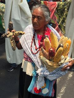 Mexico City, Mexico, 2016 March Against Monsanto