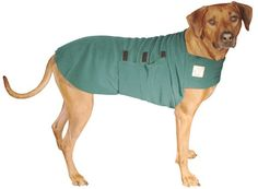 """RHODESIAN RIDGEBACK Tummy Warmer - on Etsy, but worth making it myself.  Rhodesians have nearly hairless tummies & most dog jackets don't really cover them where it's really needed.  I call my Molly's underside """"piggie belly"""". =)"""