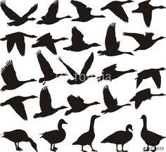 Vector: Geese black silhouette