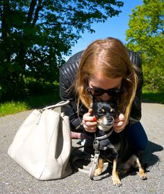 Leather jacket, Prada bag and Céline 'Baby Audrey' sunglasses - and of course the world's cutest chihuahua