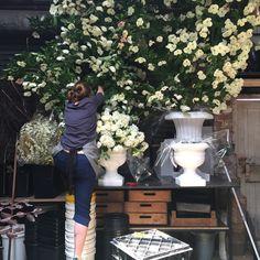 The Princess at work - Flowers Vasette