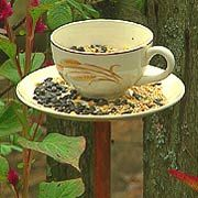 Teacup feeder - how to make - the owner of the home we are buying used to feed the birds... i have always loved this idea.