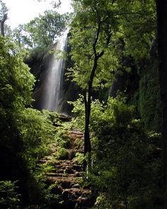 Gorman Falls.....Colorado Bend State Park Tx.......