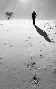Black and white, backlight. Snow Walker, Film Photography, Hungary, Budapest, My Photos, Explore, Black And White, Black White, Exploring