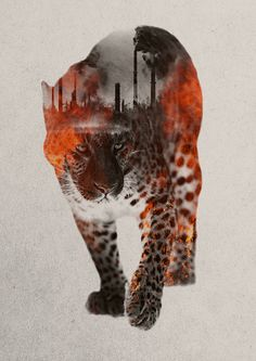 Andreas Lie, double exposure,